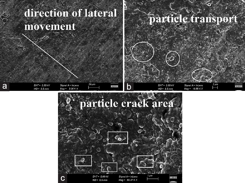Figure 4: Microstructure of heliomolar composite material after the wear test procedures  (a: wea surface, b: particle transport area and c: particle crack area)